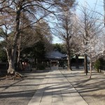 Hiratsuka castle