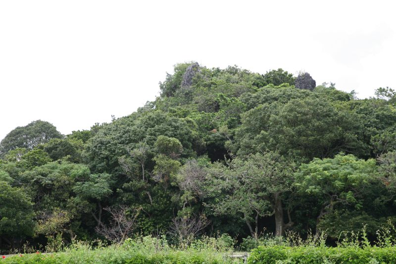 Agena castle