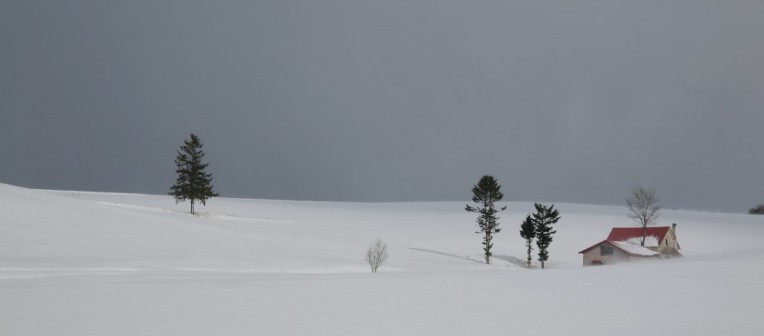Landscapes with snow