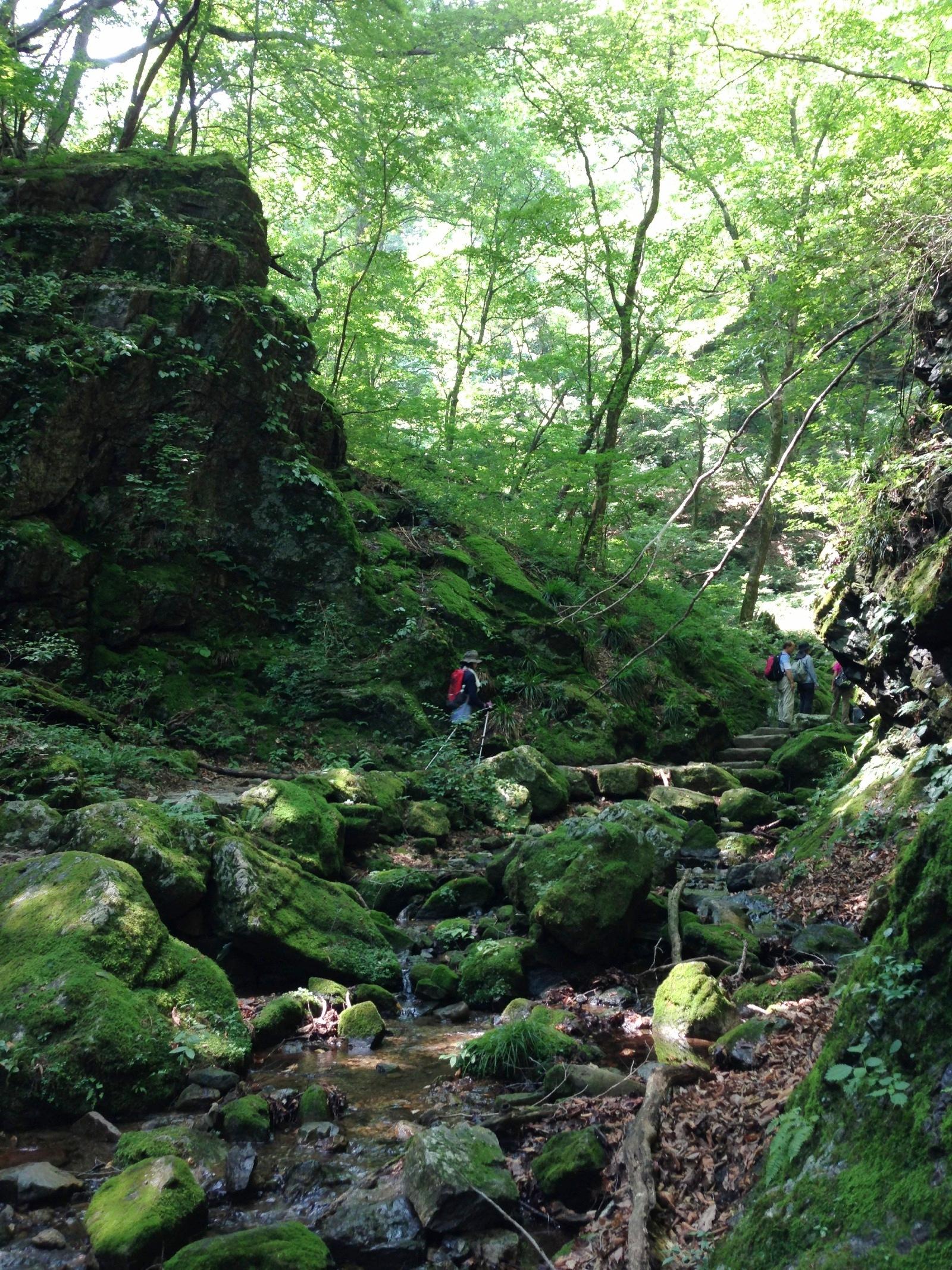 Mt. Mitake rock garden 2
