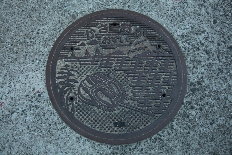 The world of Japan's Artistic Manhole Covers