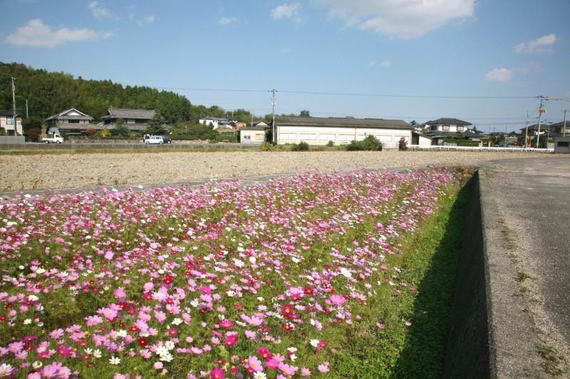Higashi-ueta, Takamatsu