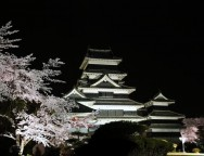 Matsumoto castle and Cherry blossoms