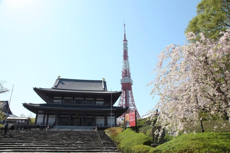 Zojoji and Tokyo tower