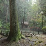 Okuni Jinja, Morimachi, Shizuoka