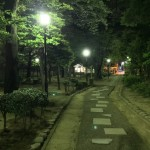 Night Walk in a Park