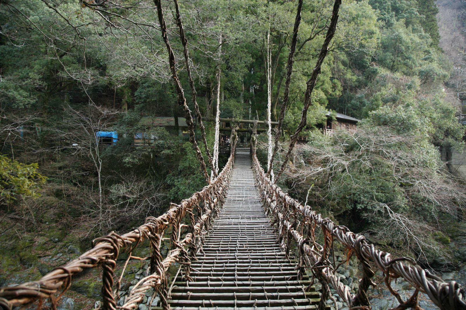 Kazura-bashi (Kazura Bridge)
