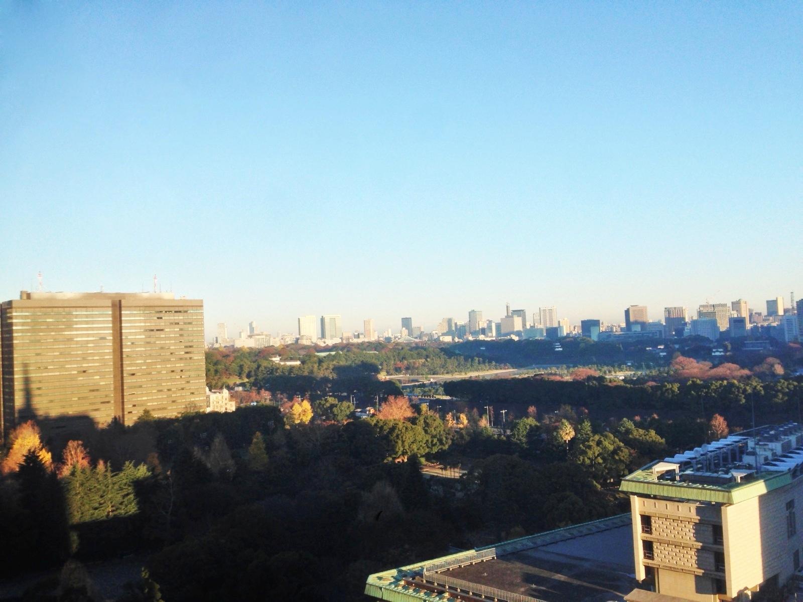 Looking down Tokyo