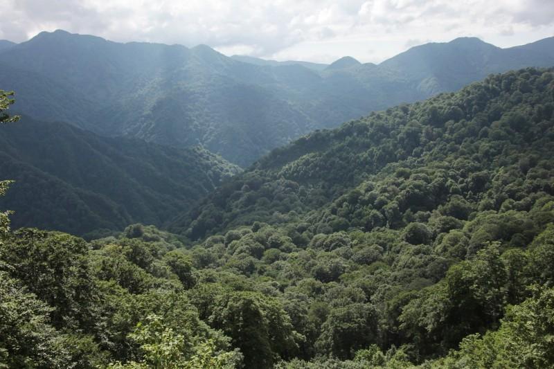 Shirakami-Sanchi, Aomori