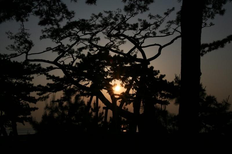 Sunrise at Miho no Matsubara