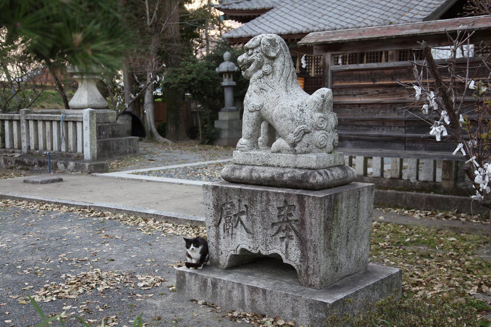 Nakatsu Jinja, Oita