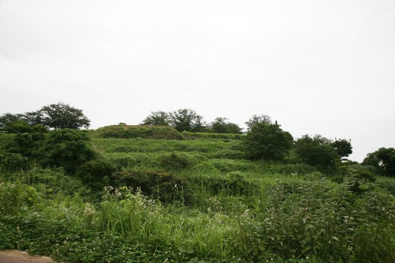 Hara castle ruins
