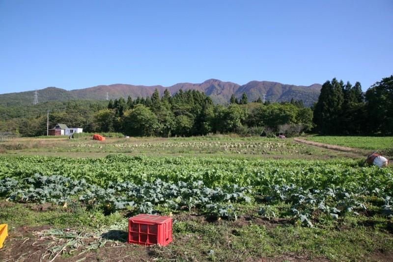 kanno, Yamagata-shi, Yamagata
