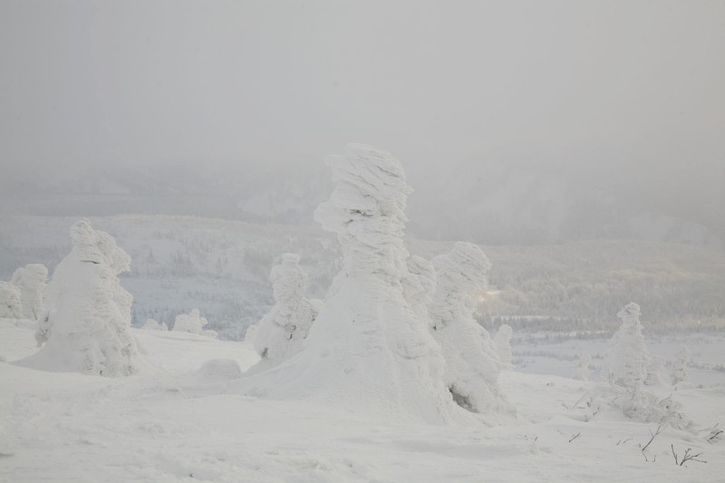 Snow Monsters in Mount Hakkoda, Aomori