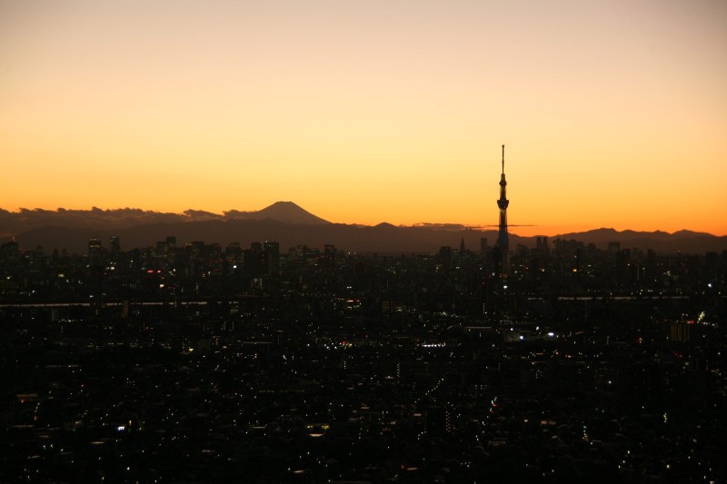 Mount Fuji and Tokyo sky tree